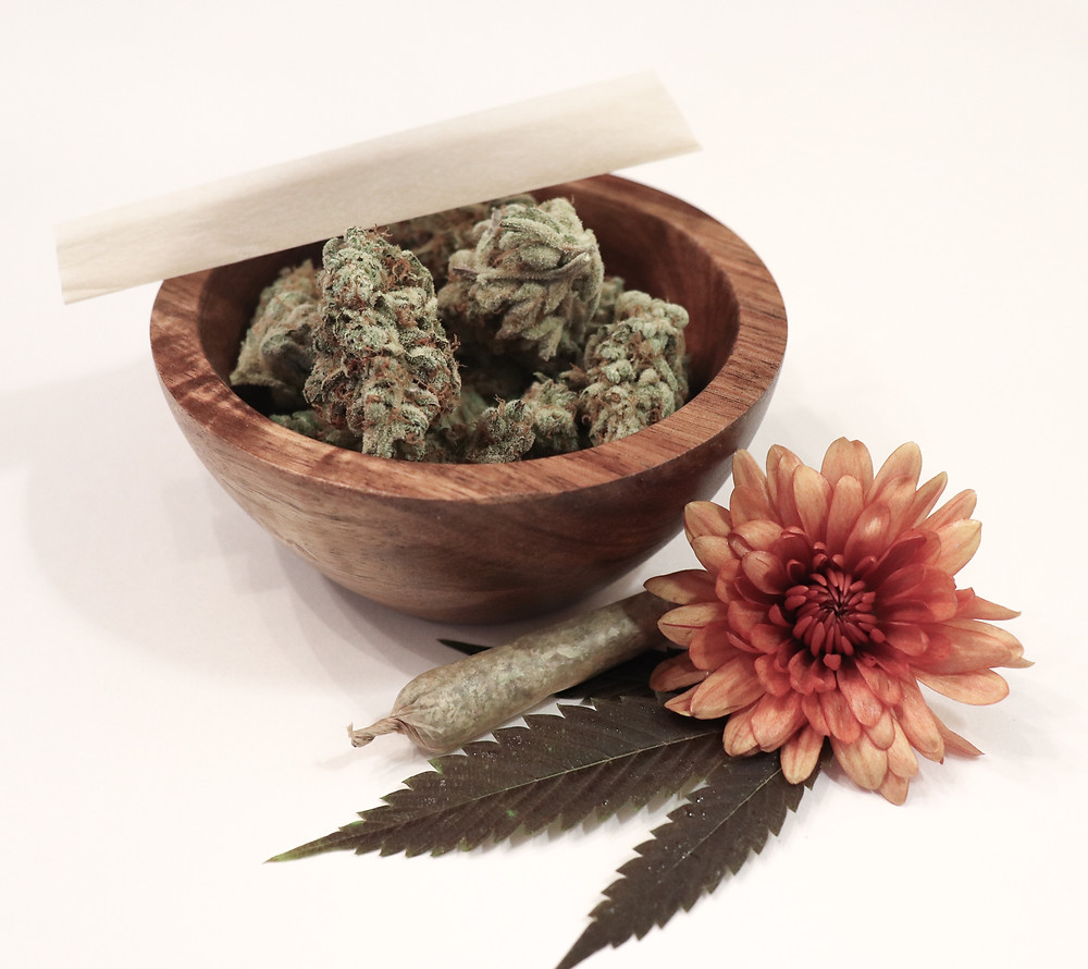 The CBD Plant and its benefits