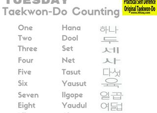 Taekwon-Do Tuesday - October 2016