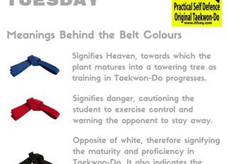 Taekwon-Do Tuesday - July 2016