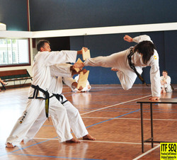 Supported Jumping Side Kick