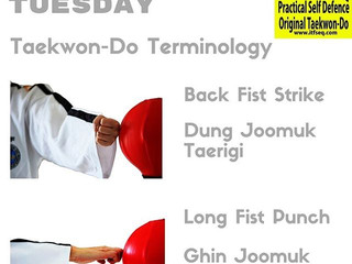 Taekwon-Do Tuesday - November 2016