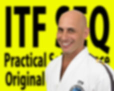 Greg Santos Taekwon-Do Instructor