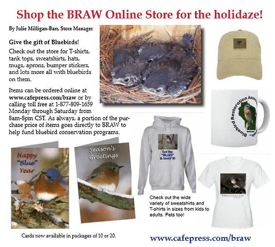 shop-the-braw-online-1.png