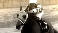 MSG Horse racing cinematographer high speed slow motion phantom Flex