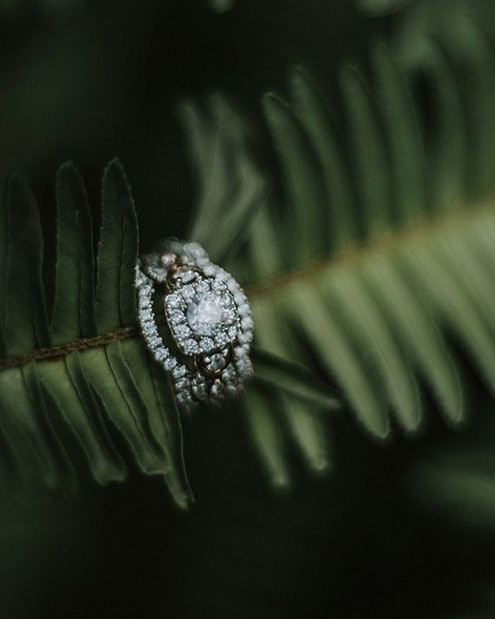 I adore ring shots ._._.jpe