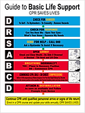 Guide to Basic Life Support