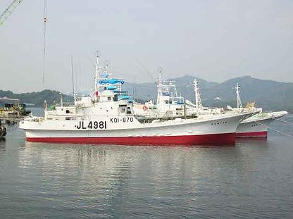 カツオ一本釣り協力船5.jpg
