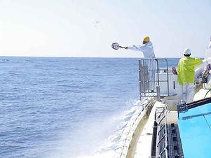 カツオ一本釣り漁業4.JPG