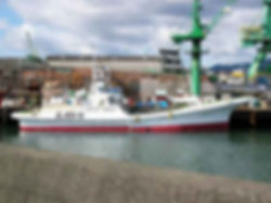 カツオ一本釣り協力船3.jpg