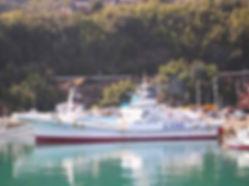 カツオ一本釣り協力船6.jpg