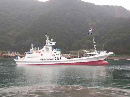 カツオ一本釣り協力船10.jpg