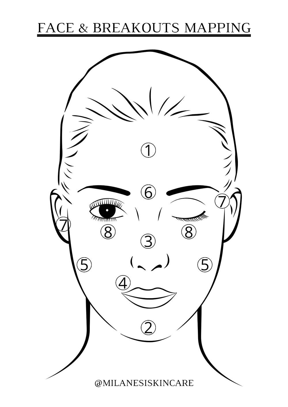 Mappa della pelle e spiegazione della comparsa di brufoli