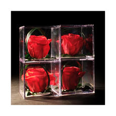 Rose Eternelle 0017