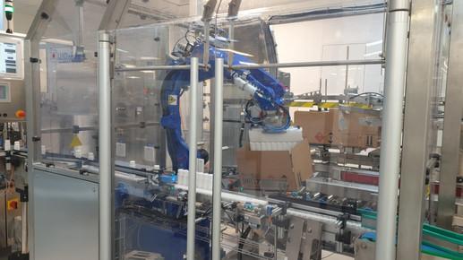 Robotic auto case packer