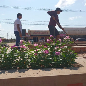 Prefeitura Municipal realiza manutenção dos canteiros do município