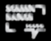 Screendance Forum Square Silver Logo.png