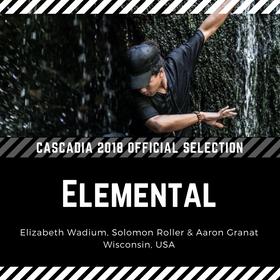CAS18 IG Elemental.png