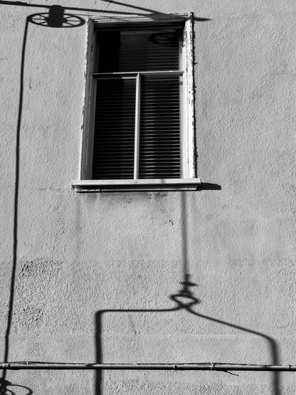 Still Life-15.jpg