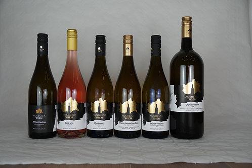 Großes Probierpaket 2019 (12 Flaschen inkl. Lustigster Wein LIMITED)