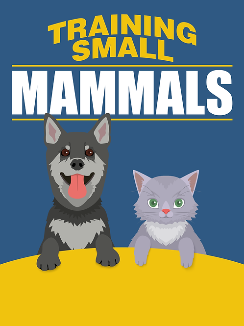 Training Small Mammals