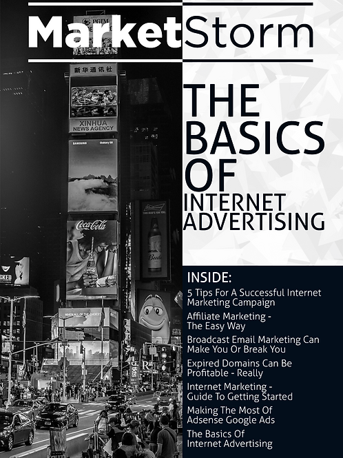 THE BASICS OF INTERNET ADVERTISING
