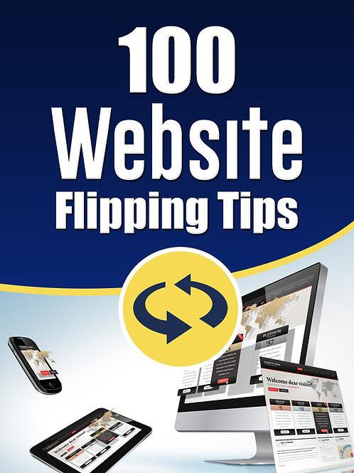 100WebsiteFlippingTips