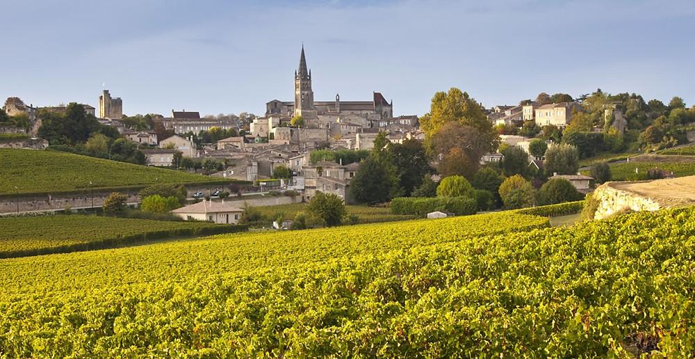 A Cabernet Franc teve sua origem em Bordeaux, na França (Foto: roughguides.com)