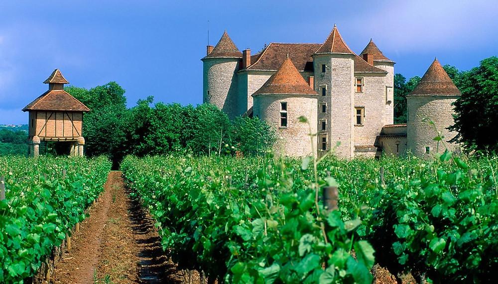 A região do Loire, na França, onde ainda se cultivada a Cabernet Franc (Foto: terroirstravels.com)