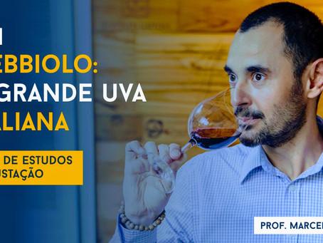 Aula 11 - Nebbiolo: A Grande Uva Italiana - Prof. Marcelo Vargas