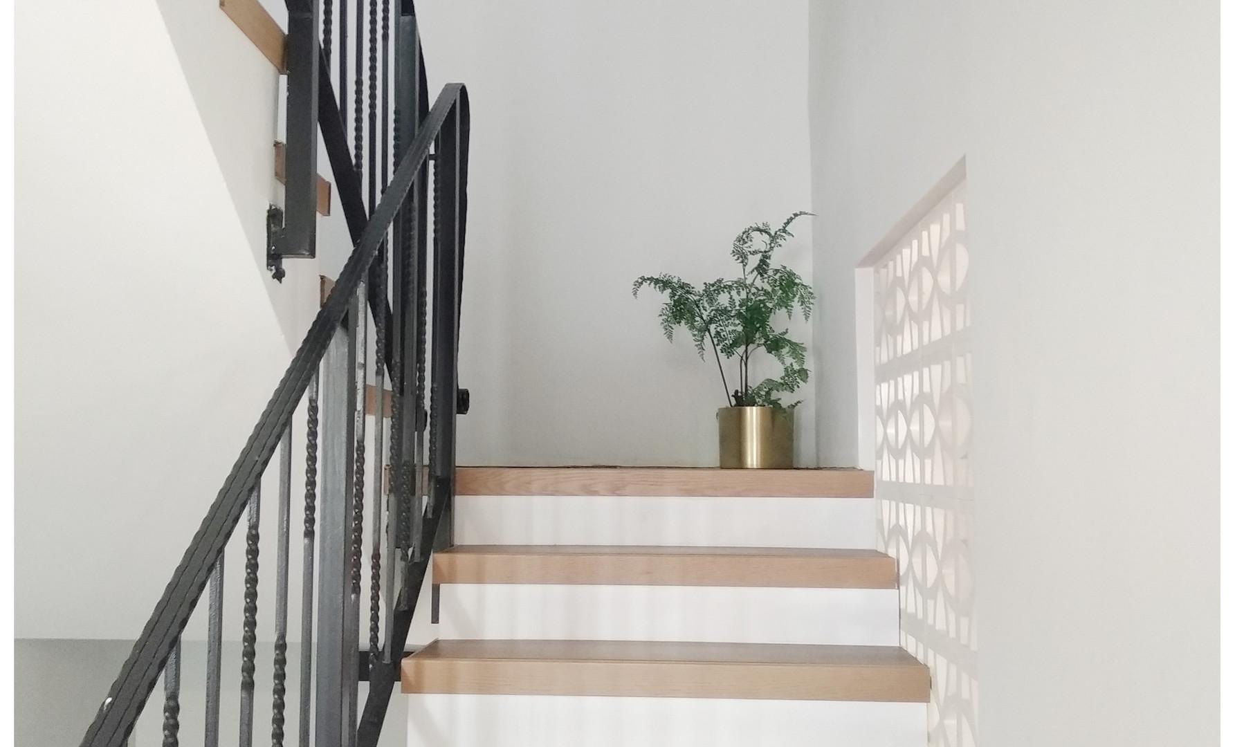 מדרגות הבית