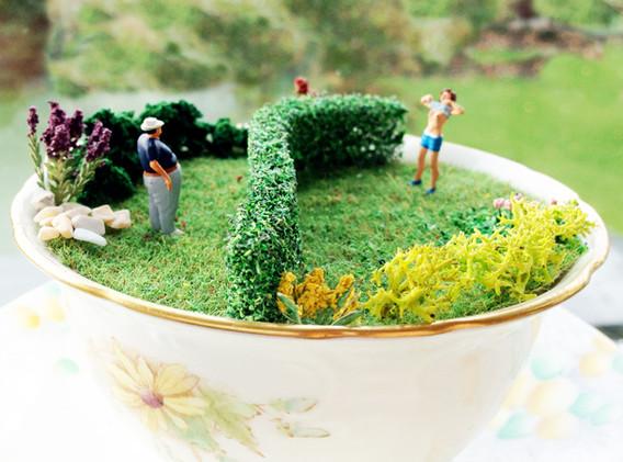 Over the garden hedge, Flasher; Nosy Neighbour