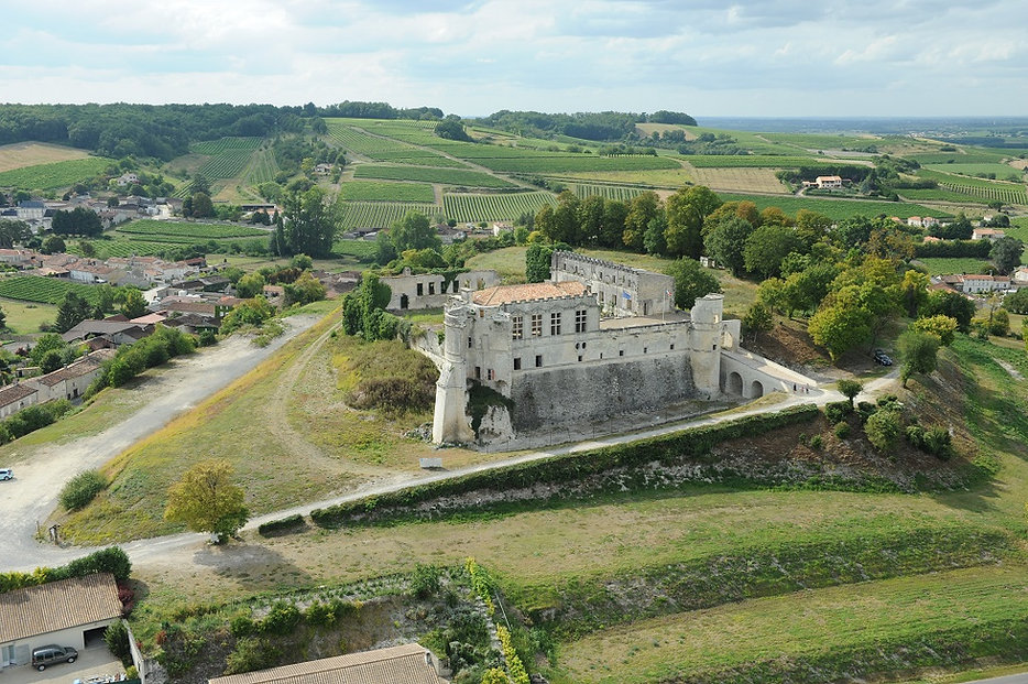Chateau-bouteville-panorama-2017.JPG