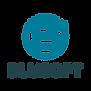 Blusoft Logos-06.png