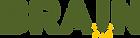 brain-logo-01.png