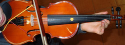 ViolinoDallAltoWide