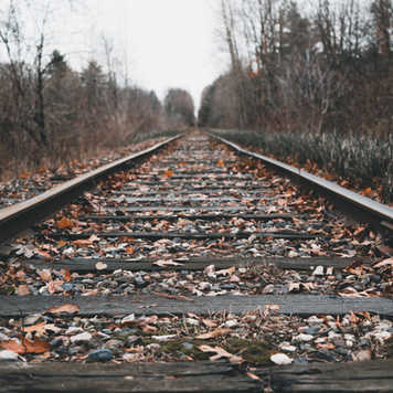Fall Train Tracks