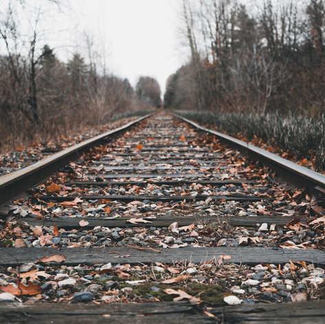 Fall Train Tracks