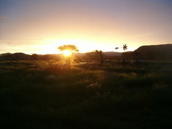 Farm sun-sets February 2011