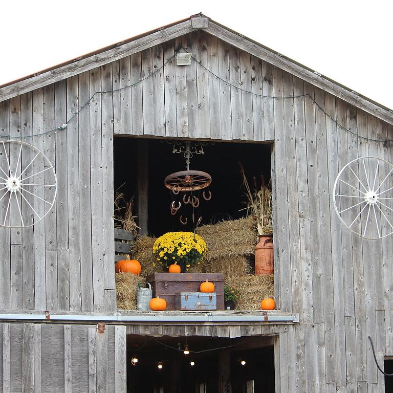 Fall Harvest School Visit
