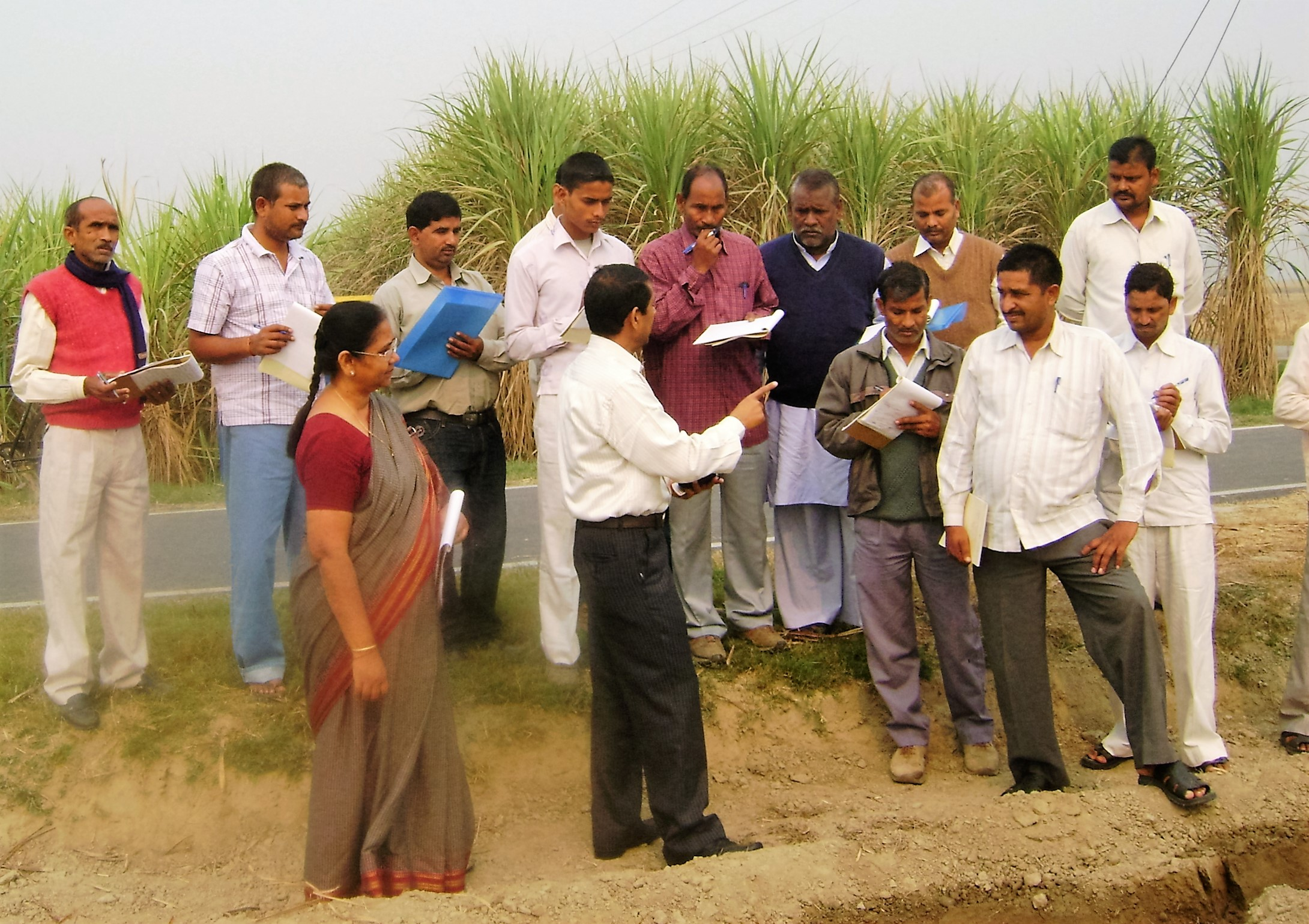 Master Farmer Demonstrating New Methods of Cultivation