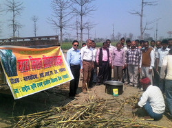 Awareness Camps at Village Level by Facilitators