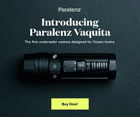 Paralenz_MPU Banner 300x250.png