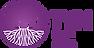 logo-tyn-bonne-résolution.png