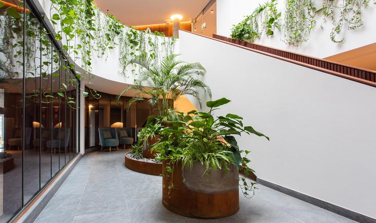 The V SPA & Wellness center  (11).jpg