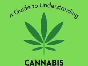 A Guide to Understanding Cannabis