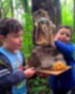 Nature, Ecology, learning, ECO Adventures, Cork, Ireland
