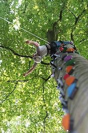 Tree climbing, Cork, Ireland, Eco Adventures