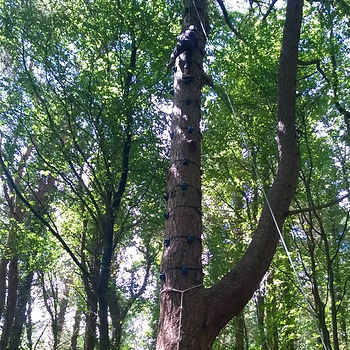 climbing cork