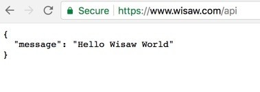 WiSaw on the web