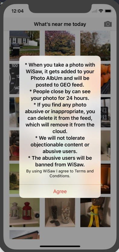 WiSaw T&C screen